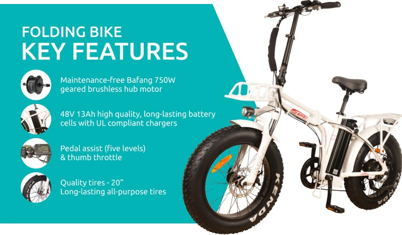 DJ Folding Bike 750W 48V 13Ah Power Electric Bicycle